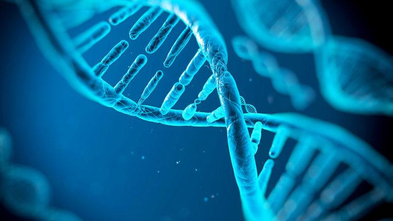 Científicos italianos acceden a fotos directas del ADN