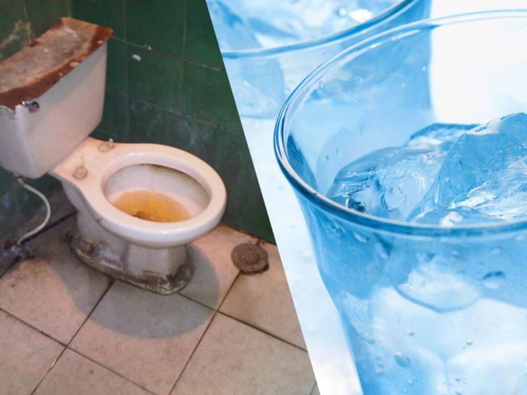 Qué tiene más bacterias, el inodoro o un hielo de restaurante