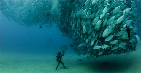 buzo de cuevas submarinas