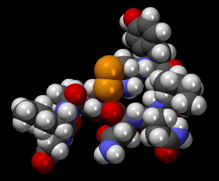 Oxitocina, la culpable de la infidelidad